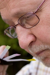 Nosetraining websitefoto Hans_2 (2) smelling Henri in profile